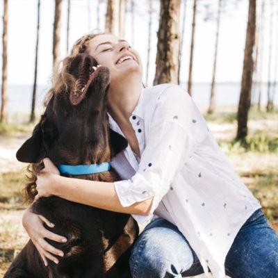 6 Norske Hundetilbehør du neppe visste om